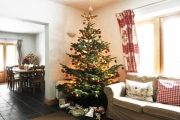 Wash House Christmas tree